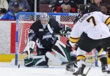 Credit: http://coloradoeagles.com/echl-news/incredible-comeback-powers-eagles-to-6-5-overtime-win/
