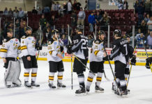 Credit: http://coloradoeagles.com/echl-news/colorado-advances-to-second-round-with-6-3-win-over-idaho/