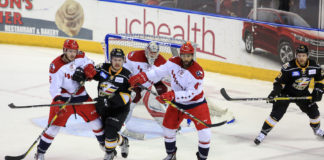 CREDIT: http://coloradoeagles.com/echl-news/gills-35-save-shutout-moves-series-back-to-texas/