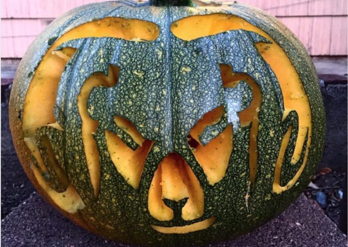 Look: 10 awesome colorado sports themed pumpkin carvings mile high