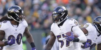 C.J. Mosley. Credit: Mike De Sisti, USA TODAY Sports.