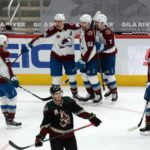 avalanche ducks prediction